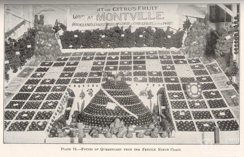 fruits-of-queensland-montville-1927-queensland-agricultural-journal
