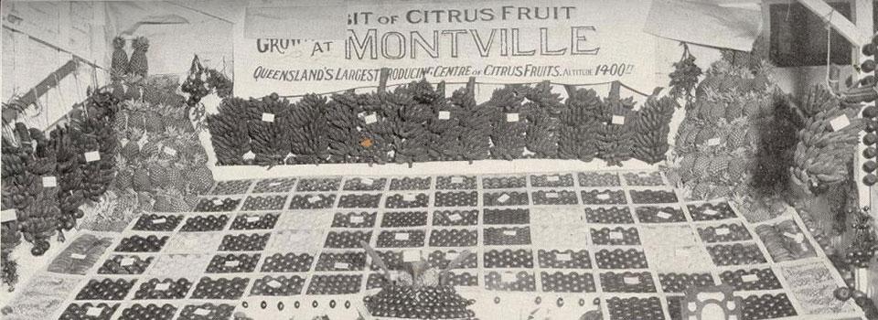 Fruit Display  Brisbane RNA Show 1927