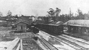 Hail Palmwoods 1916