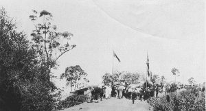 Opening Palmwoods-Montville Road, 1929