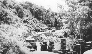 Landslide on Palmwoods-Montville Road, 1930