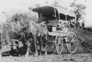 Owen Callaghan with his coach and four horses c.1915