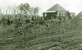 The First Maleny Pioneers