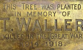 Remembering Montville's Fallen