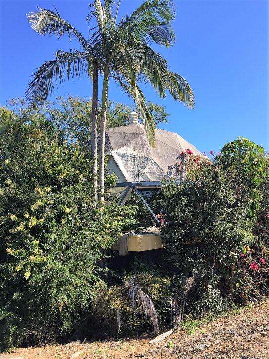 The Dome, overgrown and derelict, 2017