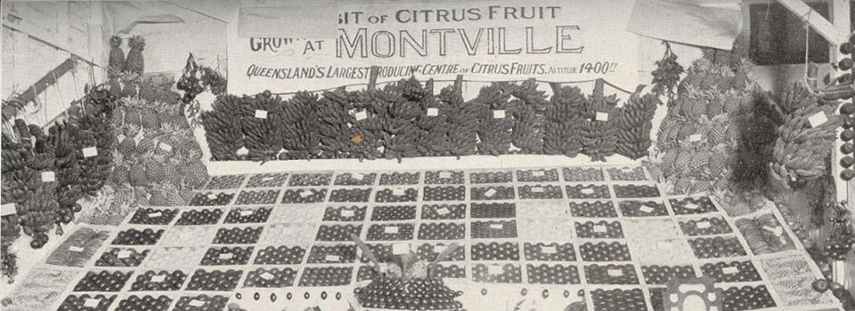Fruit Display  Brisbane RNA Show 1927