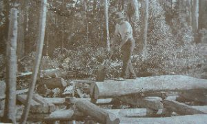 Pit_sawing_in_Montville