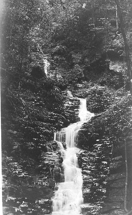 Elston Falls
