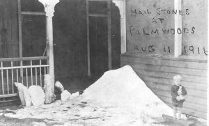 Hail at Palmwoods 11th August 1916