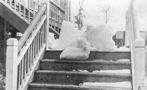 Hail at Palmwoods August 1916