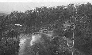 Palmwoods-Montville Road, C. 1929