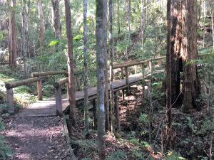 Bridge built by Sid Johnston and Work for the Dole Team on behalf of the Montville Village Association