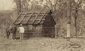 The Bark Hut by the Side of the Road